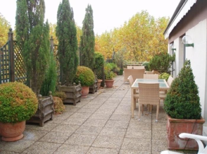 entretien de terrasses à bordeaux - entretien de plantes sur