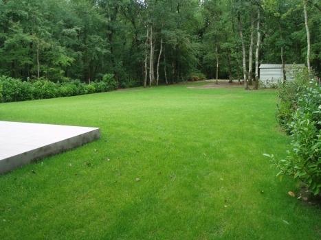 Les gazons signature verte paysagistes bordeaux for Entretien jardin gironde