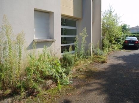 Entretien jardins et terrasses bordeaux signature verte for Entretien jardin 53