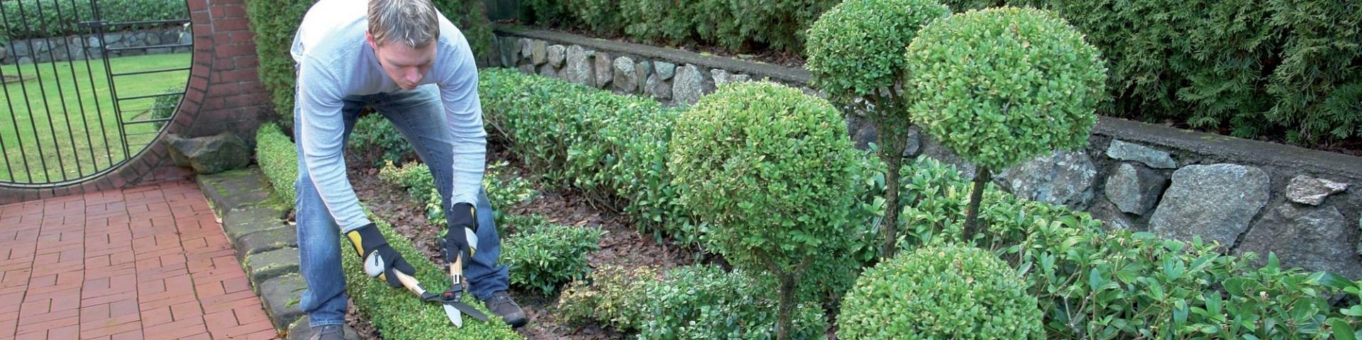 Signature verte le paysagiste de bordeaux paysagistes for Entretien jardin saint medard en jalles